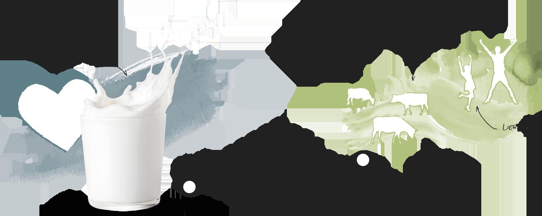 Eine Grafik zeigt ein Glas Mich