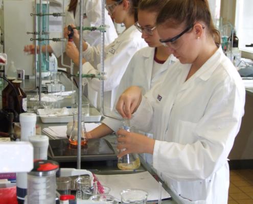 In einem Labor werden Versuche durchgeführt