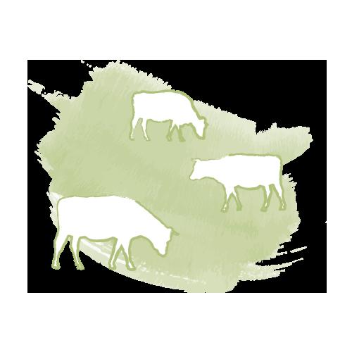 Ein Icon zeigt Kühe