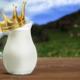 Ein Milchkrug mit einer Krone